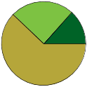 Pie chart of all name statuses